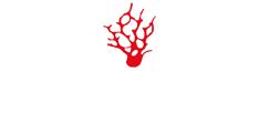 red coral nautica castro salento